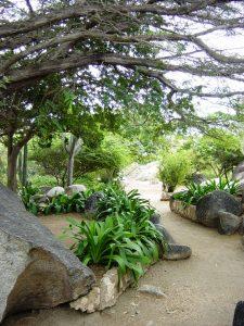 Montagne de roches et de verdure
