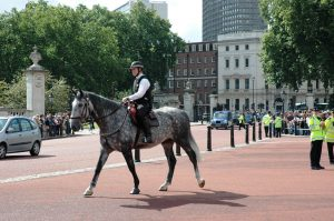 La relève de la Garde au Palais Buckingham