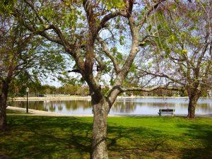 Très beau parc
