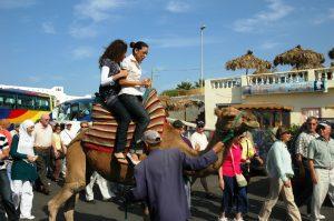 Promenade en chameau