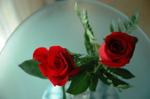 Roses envoyées par le Captain's Club