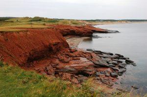 Les plages rouges de Cavendish
