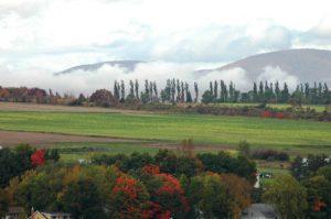 La brume dans la montagne