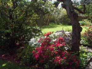Jardin de la maison Haute-Ville (Victor Hugo)