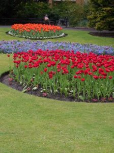 Jardin botannique