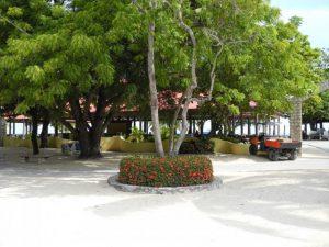 Kiosque au port