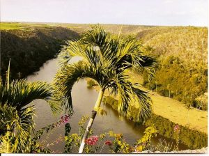 Rivière Chavon