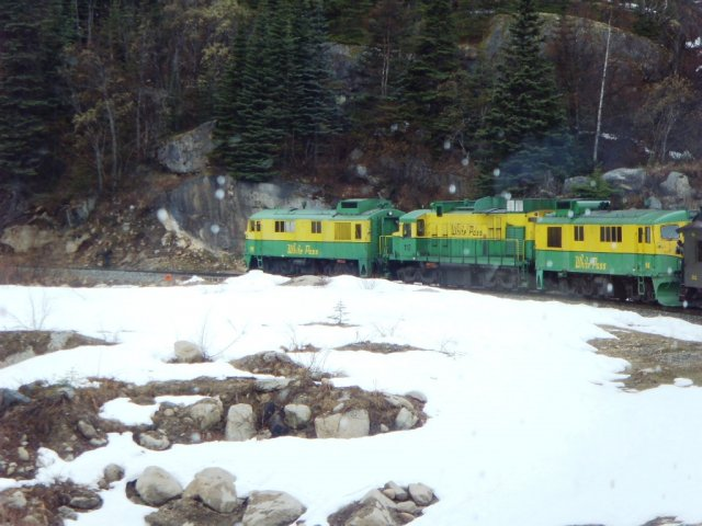 Train de la White Pass