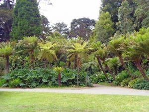 San Francisco - Jardins